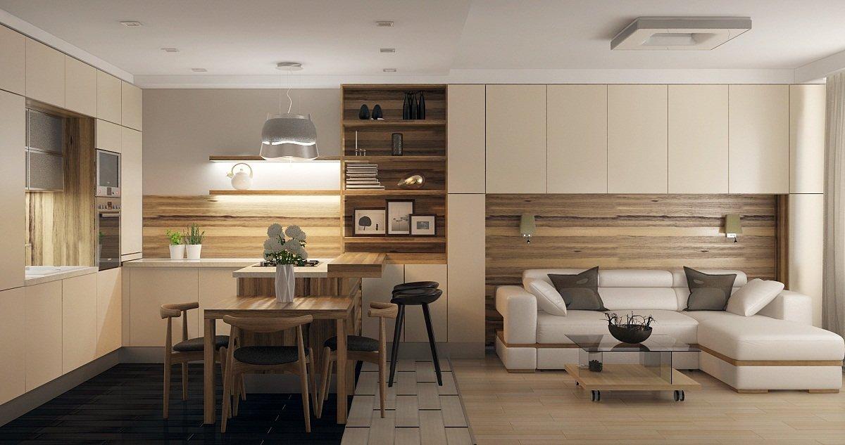 кухня гостиная 25 метров в минималистичном стиле