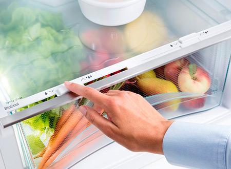 Холодильник с зоной свежести для овощей